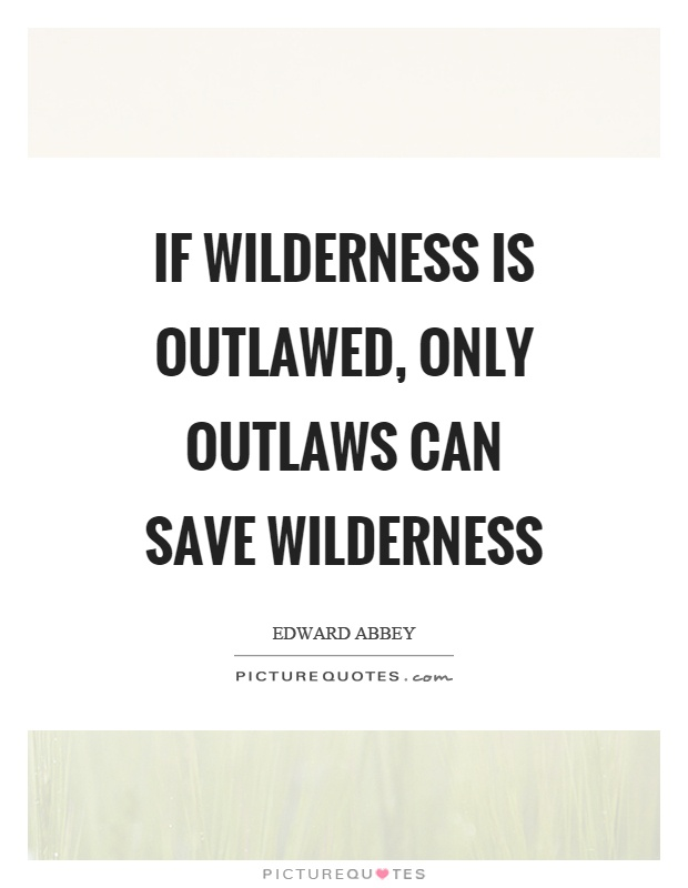 If wilderness is outlawed, only outlaws can save wilderness Picture Quote #1