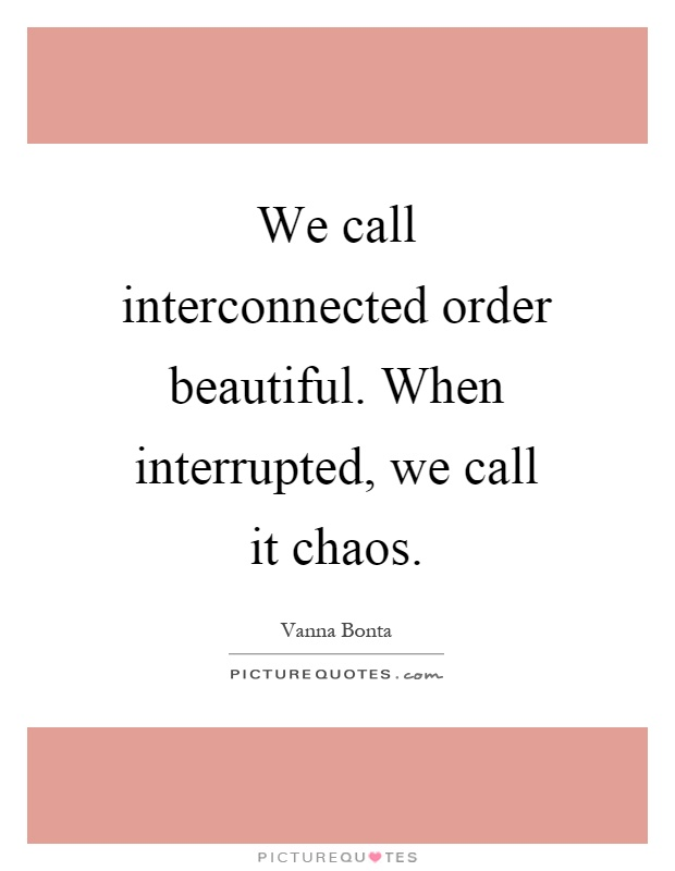 We call interconnected order beautiful. When interrupted, we call it chaos Picture Quote #1