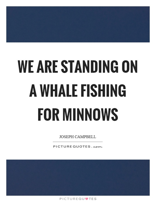 We are standing on a whale fishing for minnows Picture Quote #1