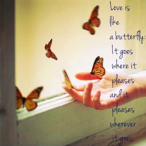 Love is like a butterfly it goes where it pleases