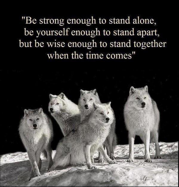 Be strong enough to stand alone, be yourself enough to stand apart, but be wise enough to stand together when the time comes Picture Quote #1