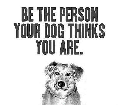 Be the person the dog thinks you are Picture Quote #1