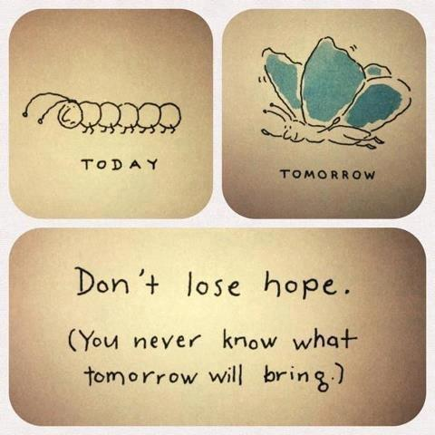 Don't lose hope. You never know what tomorrow will bring Picture Quote #1