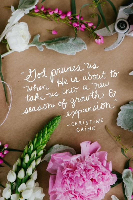 God prunes us when He is about to take us into a new season of growth and expansion Picture Quote #1