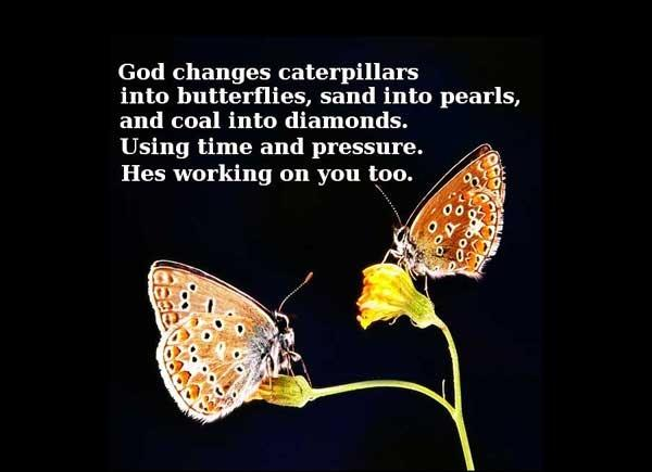 God changes caterpillars into butterflies, sand into pearls and coal into diamonds using time and pressure. He's working on you too Picture Quote #2