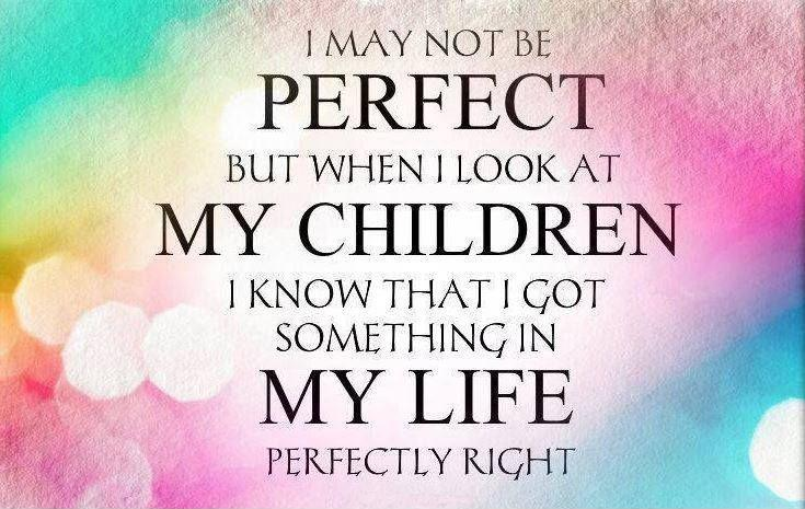 I may not be perfect but when I look at my children I know that I got something in my life perfectly right Picture Quote #1