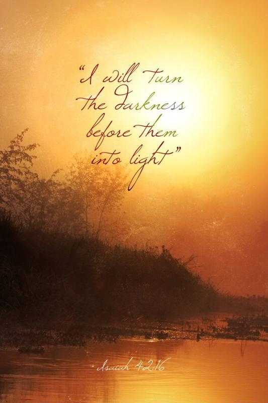 I will turn the darkness before them into light Picture Quote #1
