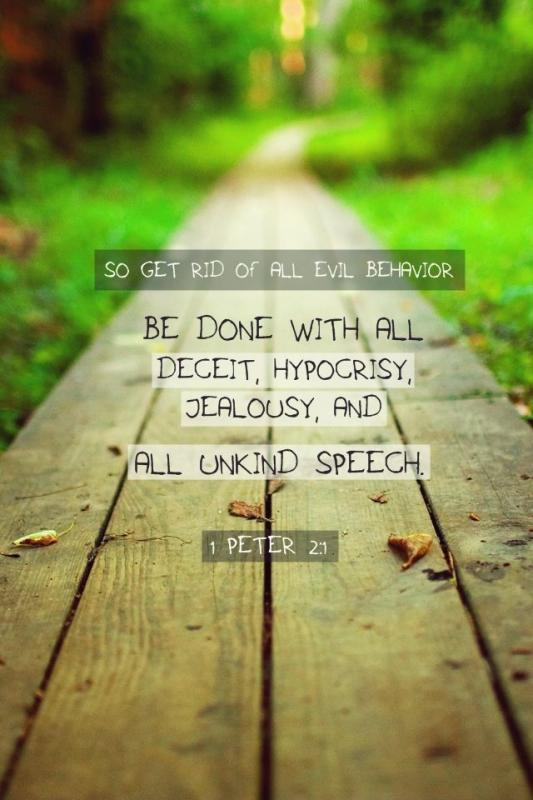 So get rid of all evil behavior. Be done with it all, deceit, hypocrisy, jealousy and all unkind speech Picture Quote #1
