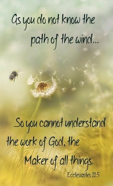 As you do not know the path of the wind, so you cannot understand the work of God, the maker of all things Picture Quote #1