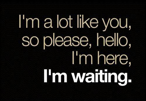 I'm a lot like you, so please, hello, I'm here, I'm waiting Picture Quote #1