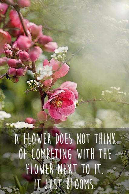A flower does not think of competing with the flower next to it. It just blooms Picture Quote #1