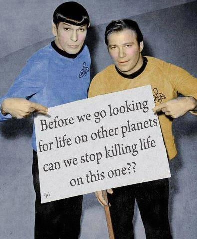 Before we go looking for life on other planets can we stop killing life on this one Picture Quote #1