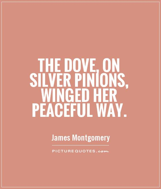The Dove, on silver pinions, winged her peaceful way Picture Quote #1