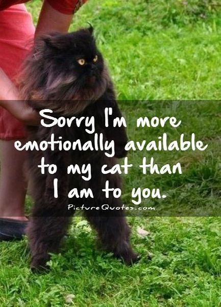 Sorry I'm more emotionally available to my cat than I am to you Picture Quote #1