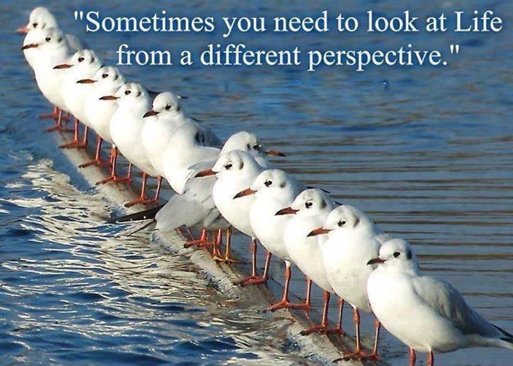 Sometimes you need to look at life from a different perspective Picture Quote #1