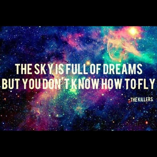 The sky is full of dreams but you don't know how to fly Picture Quote #1
