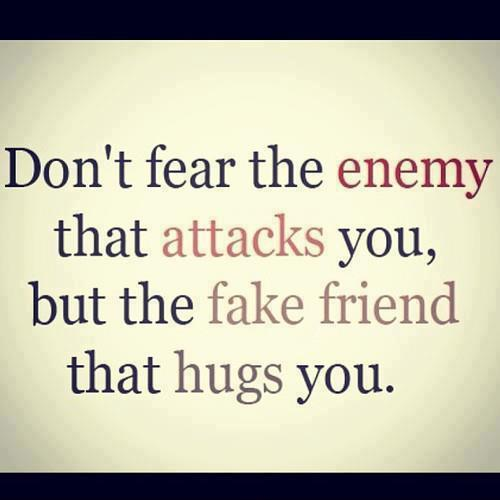 Don't fear the enemy that attacks you, but the fake friend that hugs you Picture Quote #1