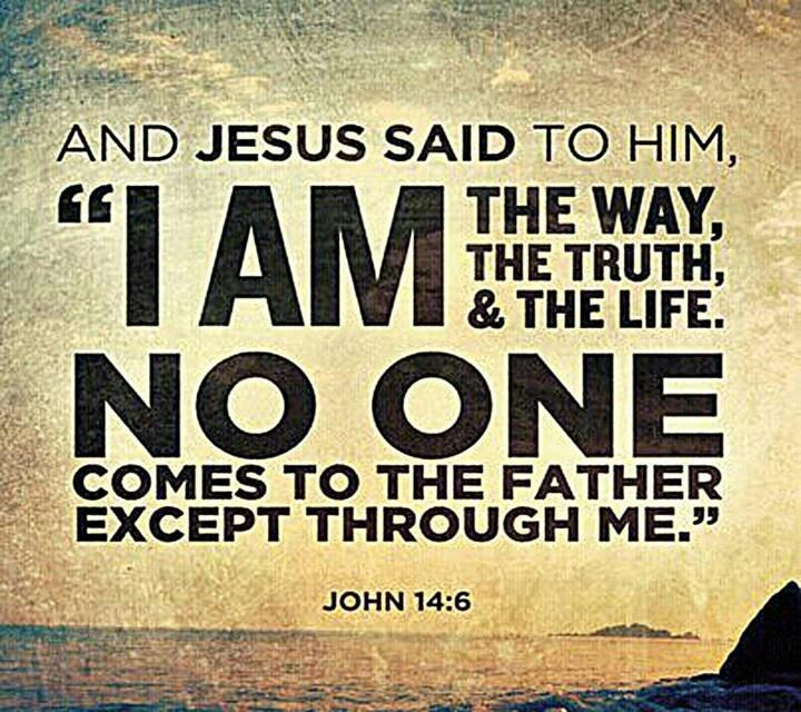 And Jesus said to him, I am the way, the truth, and the life. No one comes to the Father except through me Picture Quote #1