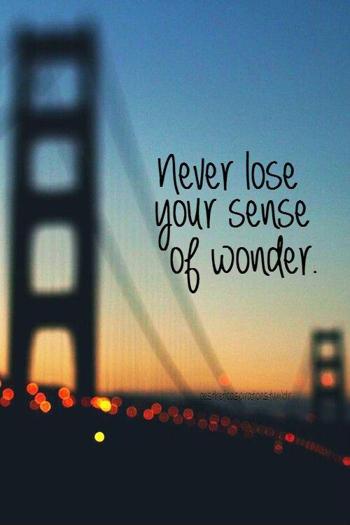 Never lose your sense of wonder Picture Quote #1