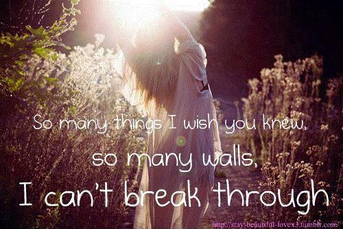 So many things I wish you knew, so many walls I can't break through Picture Quote #1