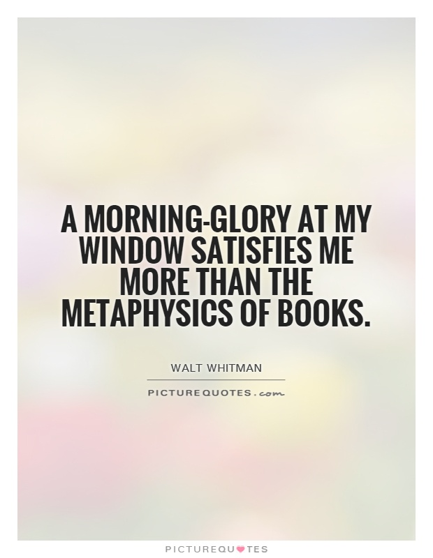 A morning-glory at my window satisfies me more than the metaphysics of books Picture Quote #1