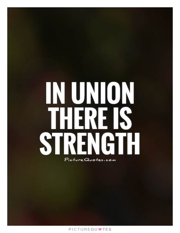 Unity Is Strength Quotes. QuotesGram