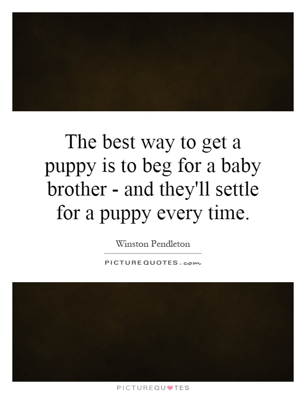 The best way to get a puppy is to beg for a baby brother - and they'll settle for a puppy every time Picture Quote #1
