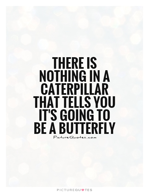 There is nothing in a caterpillar that tells you it's going to be a butterfly Picture Quote #1