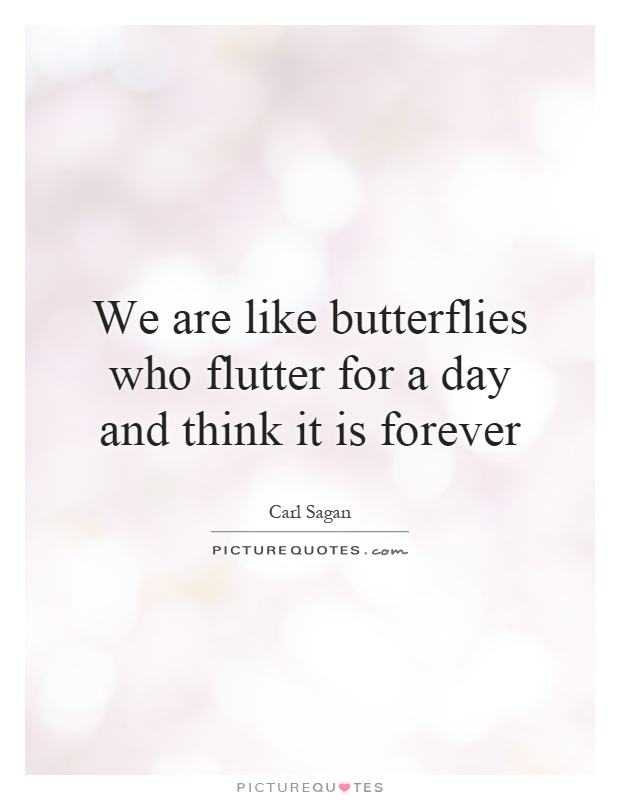 We are like butterflies who flutter for a day and think it is forever Picture Quote #1