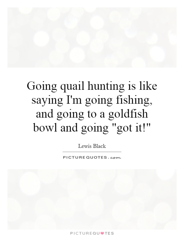 Going quail hunting is like saying I'm going fishing, and going to a goldfish bowl and going
