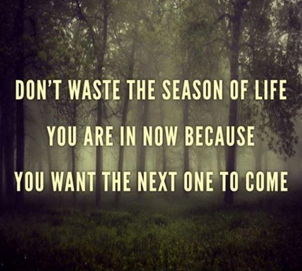 Don't waste the season of life you are in now because you want the next one to come Picture Quote #1