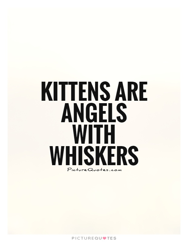 Kittens are angels with whiskers Picture Quote #1