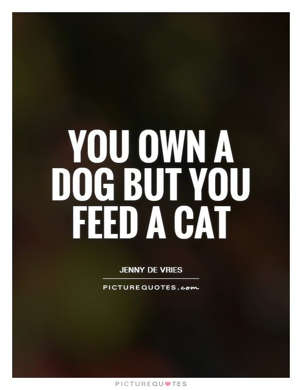You own a dog but you feed a cat Picture Quote #1