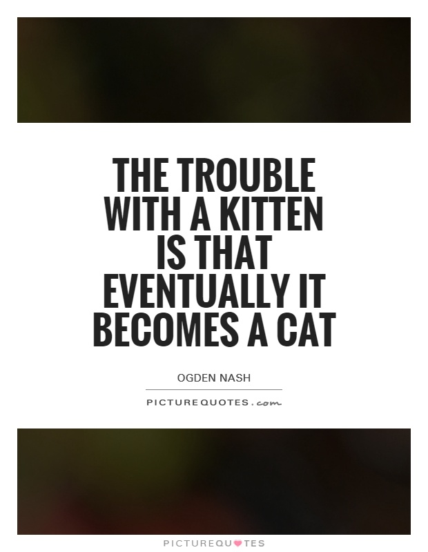 The trouble with a kitten is that eventually it becomes a cat Picture Quote #1