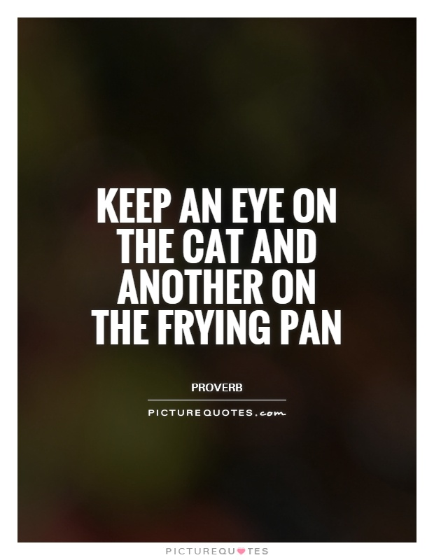 Keep an eye on the cat and another on the frying pan Picture Quote #1