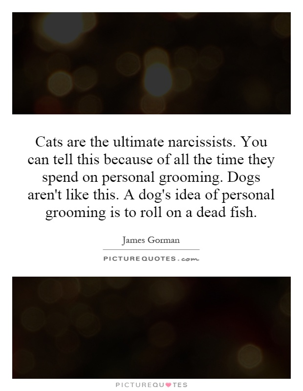 Cats are the ultimate narcissists. You can tell this because of all the time they spend on personal grooming. Dogs aren't like this. A dog's idea of personal grooming is to roll on a dead fish Picture Quote #1
