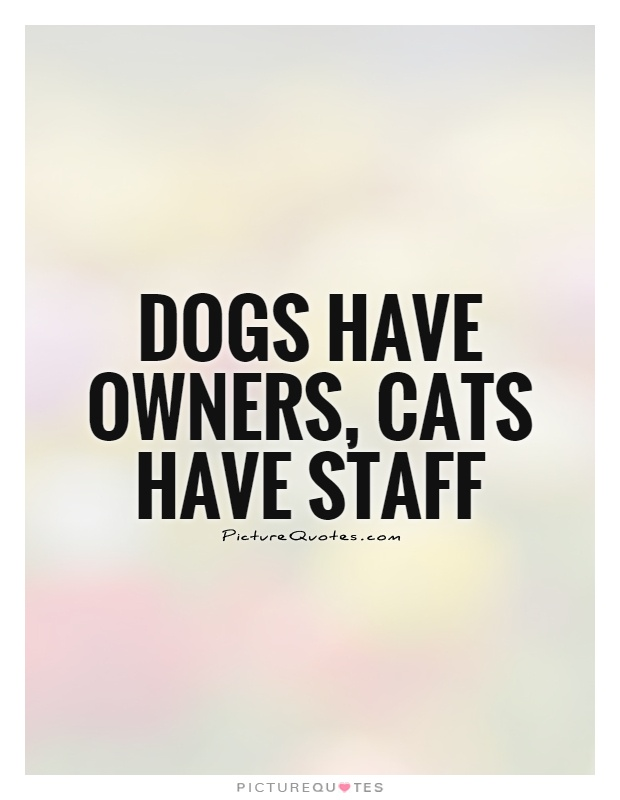 Dogs have owners, cats have staff Picture Quote #1