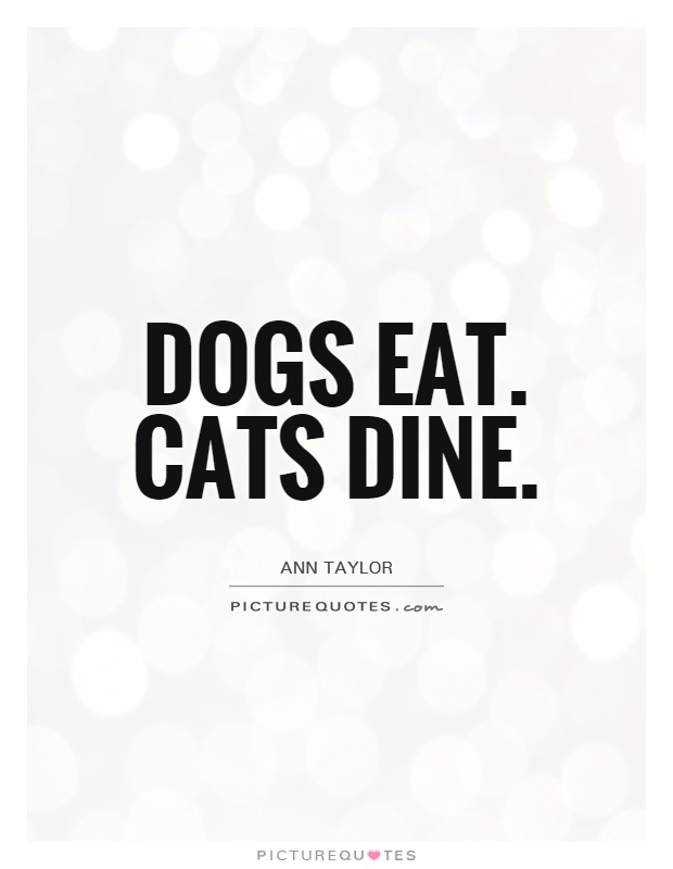 Dogs eat. Cats dine Picture Quote #1