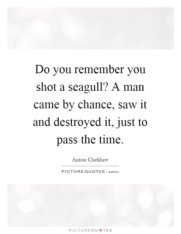 Do you remember you shot a seagull? A man came by chance, saw it and destroyed it, just to pass the time Picture Quote #1