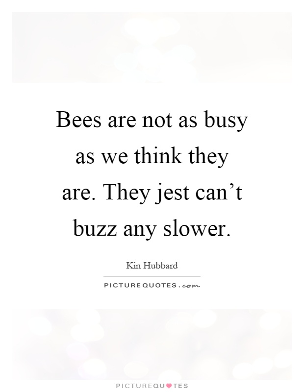 Bees are not as busy as we think they are. They jest can't buzz any slower Picture Quote #1