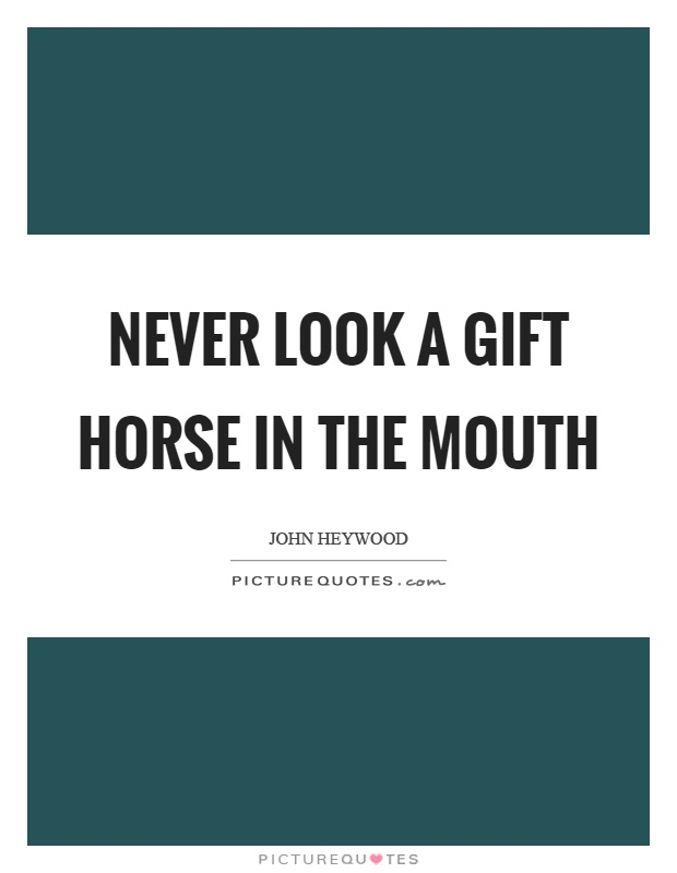 Never look a gift horse in the mouth | Picture Quotes