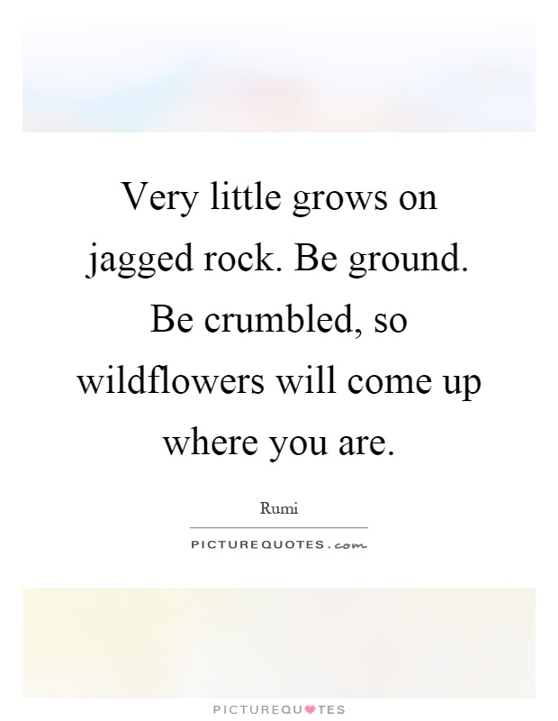 Very little grows on jagged rock. Be ground. Be crumbled, so wildflowers will come up where you are Picture Quote #1