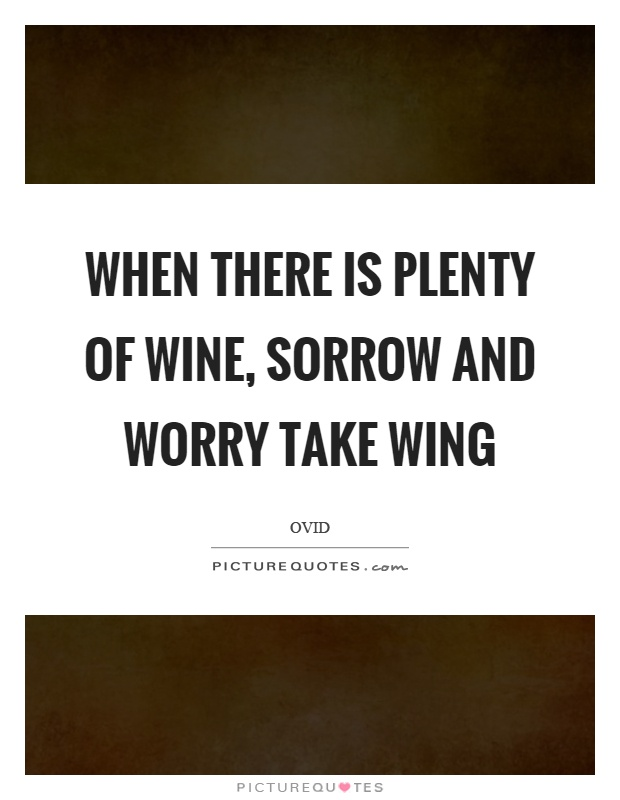 When there is plenty of wine, sorrow and worry take wing Picture Quote #1