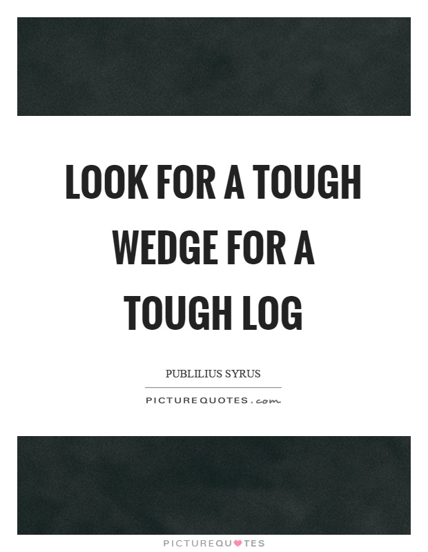 Look for a tough wedge for a tough log Picture Quote #1