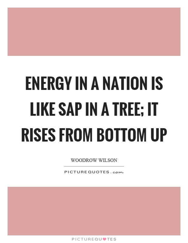 Energy in a nation is like sap in a tree; it rises from bottom up Picture Quote #1