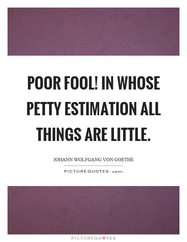 Poor fool! in whose petty estimation all things are little Picture Quote #1
