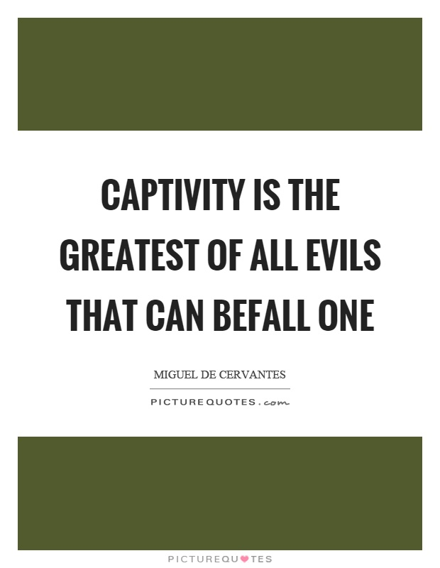 Captivity is the greatest of all evils that can befall one Picture Quote #1