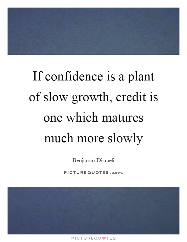 If confidence is a plant of slow growth, credit is one which matures much more slowly Picture Quote #1