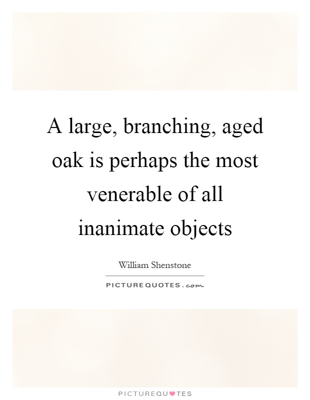 A large, branching, aged oak is perhaps the most venerable of all inanimate objects Picture Quote #1
