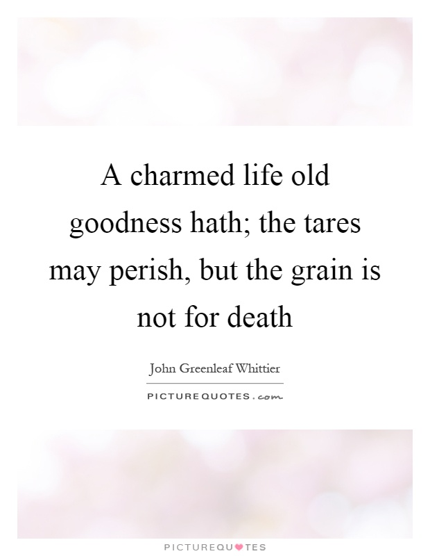 A charmed life old goodness hath; the tares may perish, but the grain is not for death Picture Quote #1